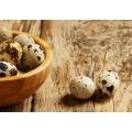 Яйцо перепелиное (20 шт)